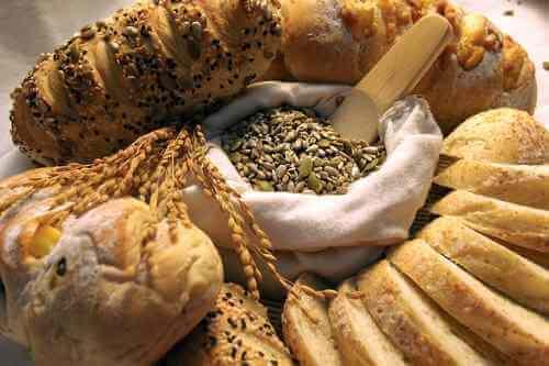 alimentos bajos hidratos de carbono