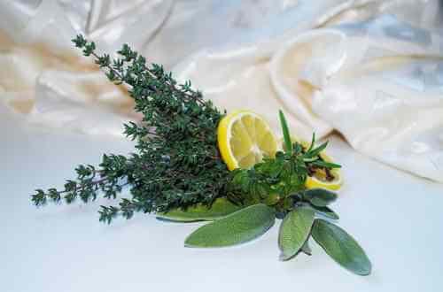 remedios naturales para expectorar